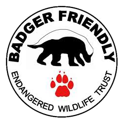 BADGER FRIENDLY ROUND