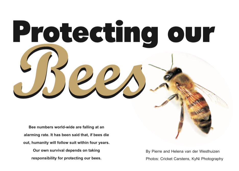 Escape Magazine Issue 12: Protecting our bees