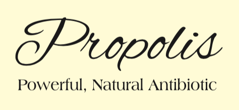 Escape Magazine Issue 17: Propolis, the powerful natural antibiotic.